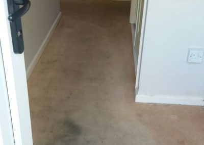 Hall carpet before